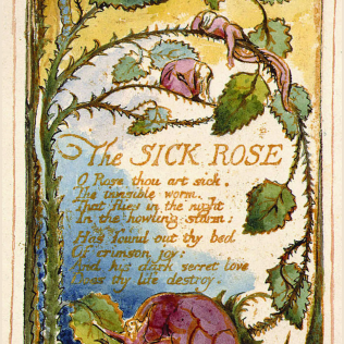 """Blake """"The Sick Rose"""" in Songs of Innocence and Experience (Wiki Media)"""
